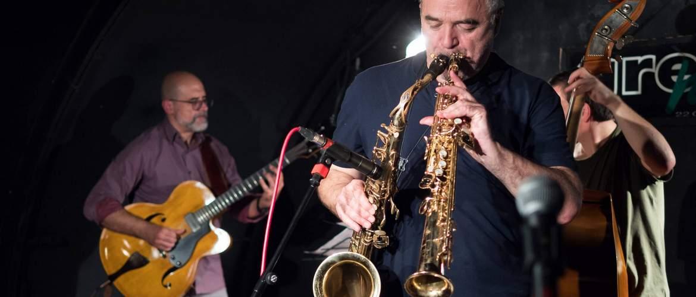 Nicolas Simion Quartet în Green Hours